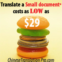 small document translation